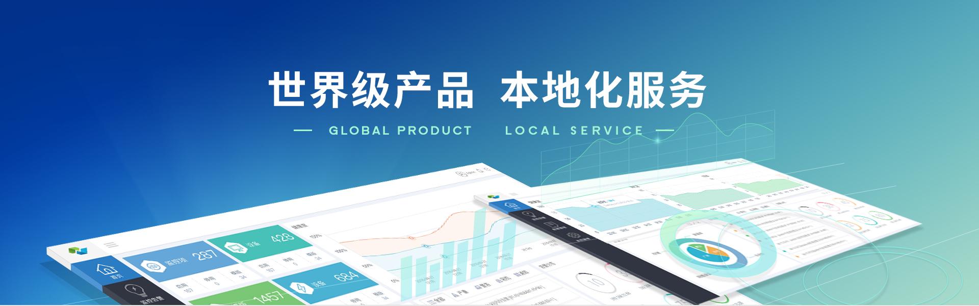 世界级产品,本地化服务