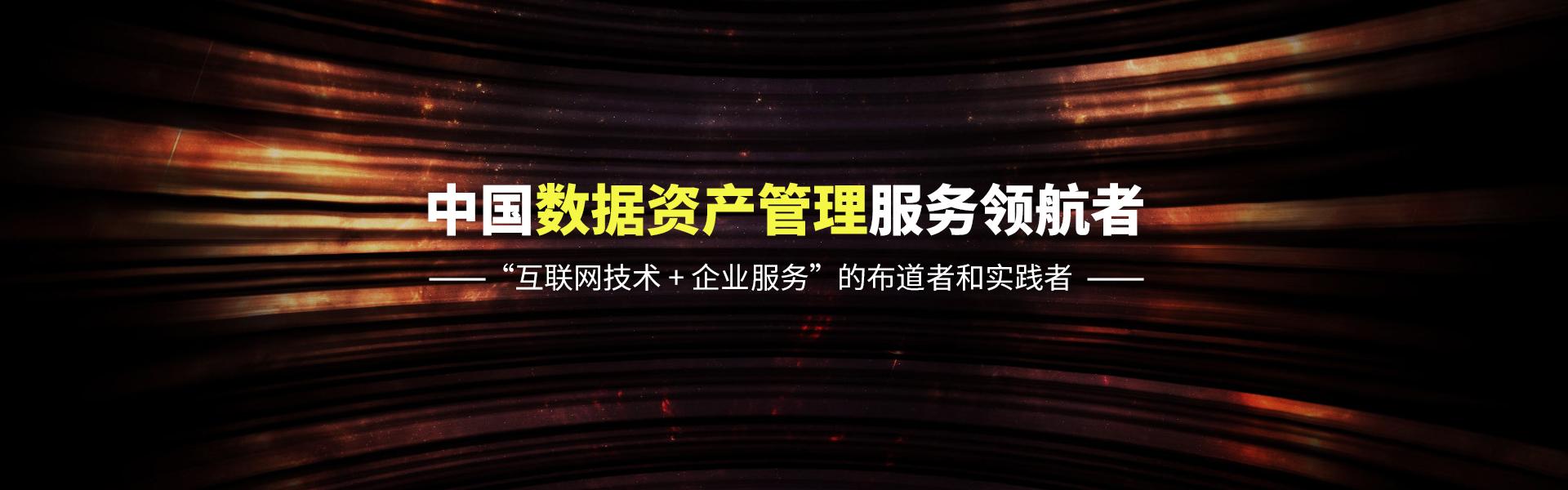 中国数据资产管理服务领航者